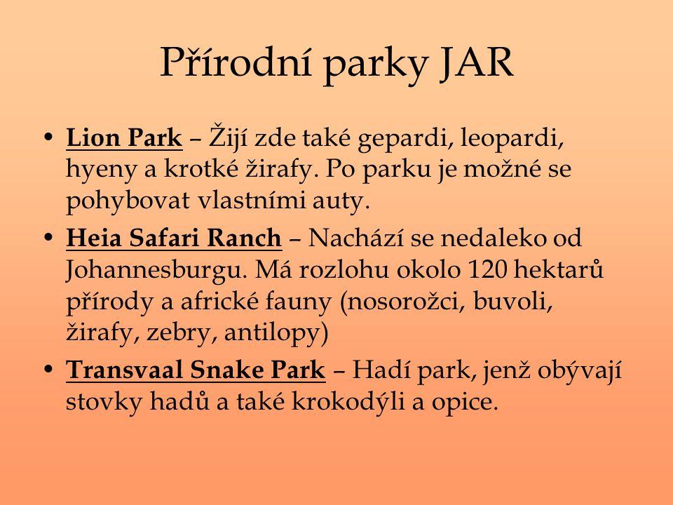 Přírodní parky JAR Lion Park – Žijí zde také gepardi, leopardi, hyeny a krotké žirafy. Po parku je možné se pohybovat vlastními auty.