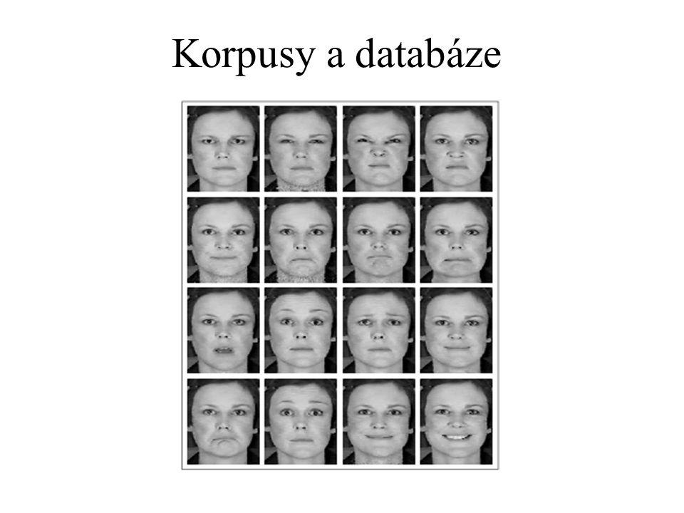 Korpusy a databáze