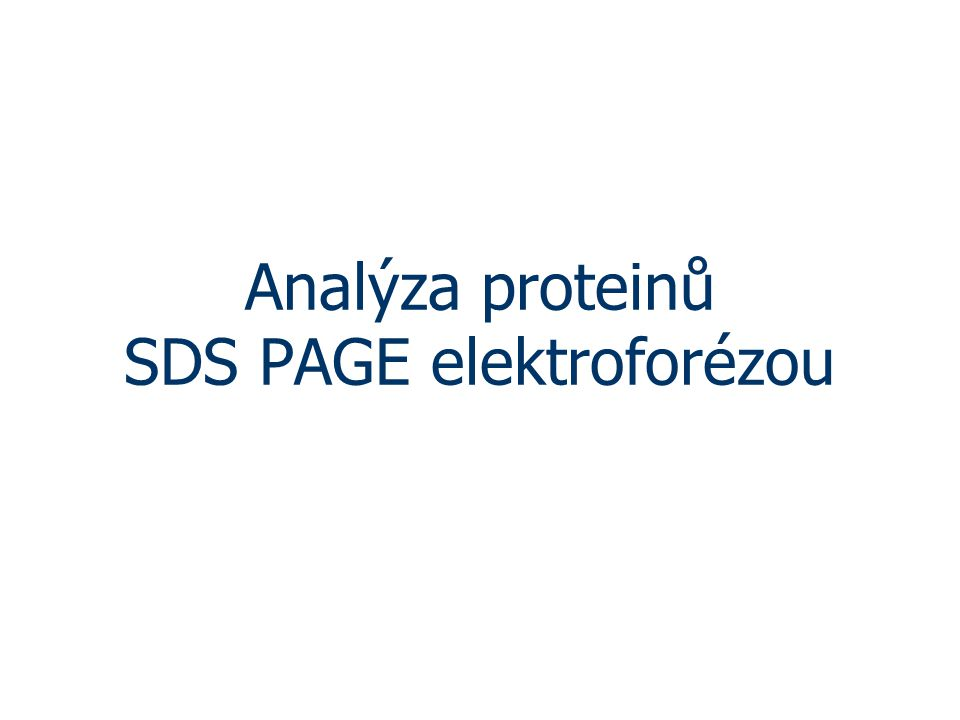 Analýza proteinů SDS PAGE elektroforézou