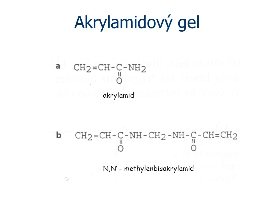 Akrylamidový gel akrylamid N,N' - methylenbisakrylamid