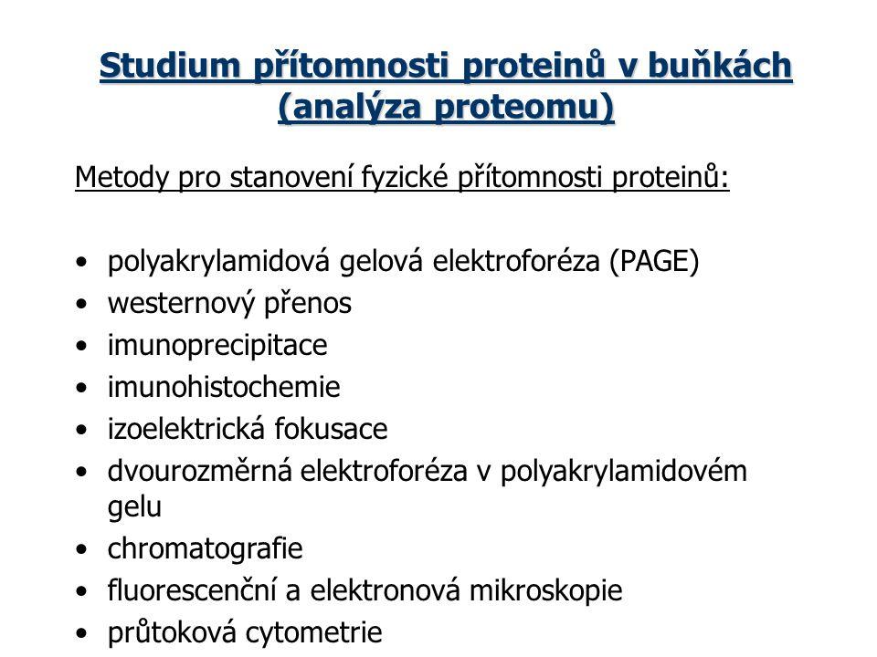 Studium přítomnosti proteinů v buňkách (analýza proteomu)