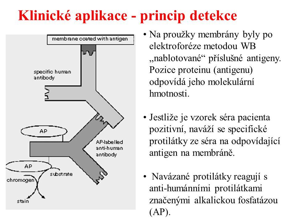 Klinické aplikace - princip detekce