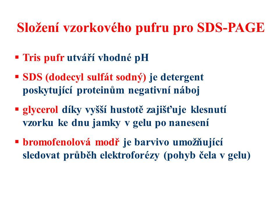 Složení vzorkového pufru pro SDS-PAGE
