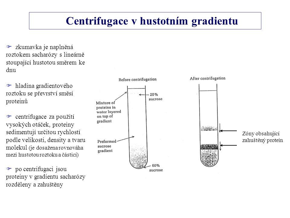 Centrifugace v hustotním gradientu