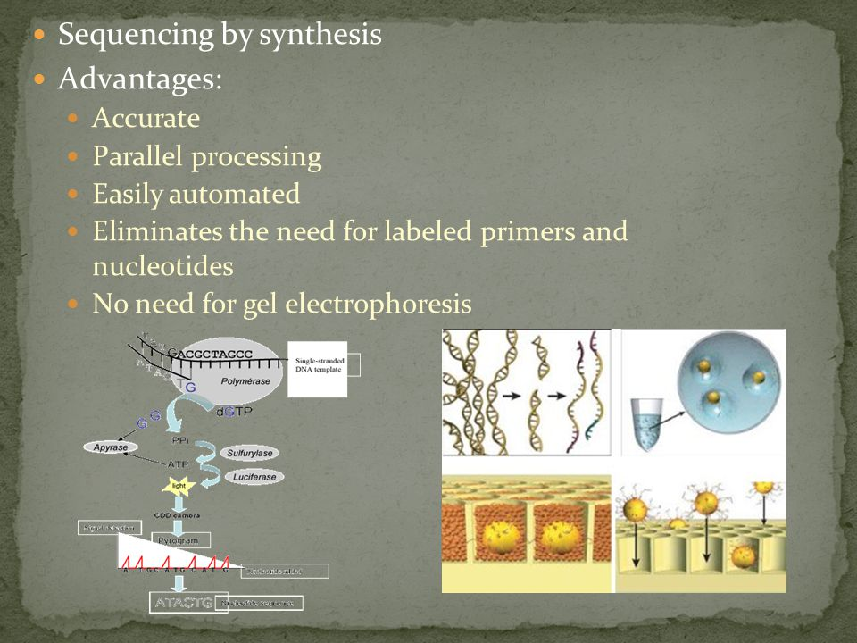 Sequencing by synthesis Advantages: