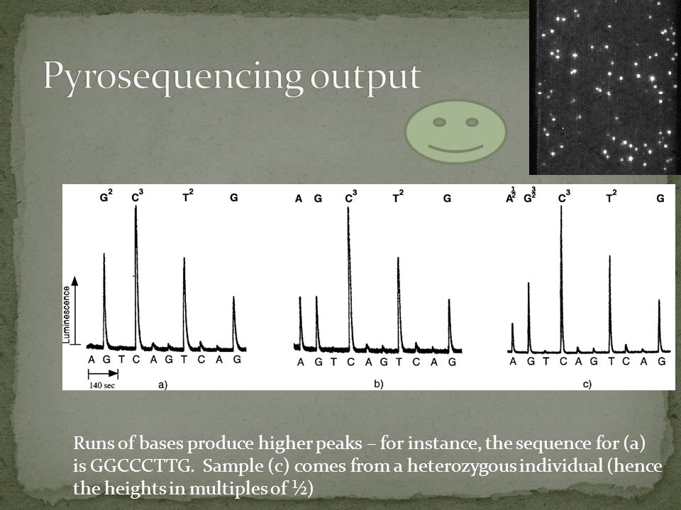Pyrosequencing output