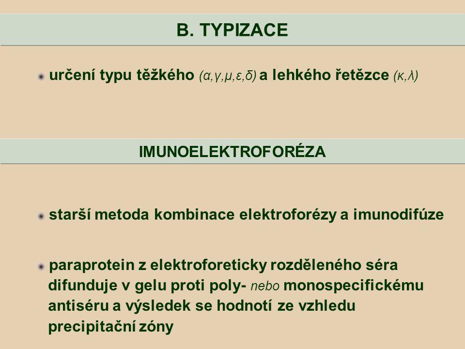 B. TYPIZACE určení typu těžkého (α,γ,μ,ε,δ) a lehkého řetězce (κ,λ)