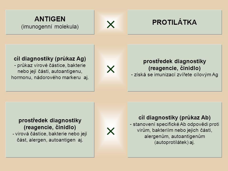    ANTIGEN PROTILÁTKA (imunogenní molekula)