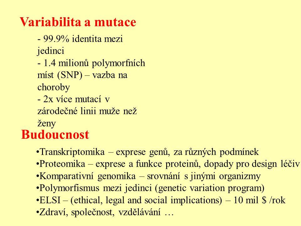 Variabilita a mutace Budoucnost 99.9% identita mezi jedinci