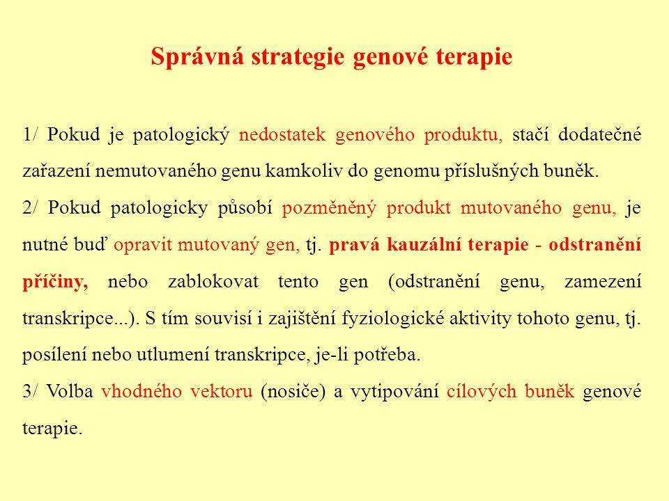 Správná strategie genové terapie