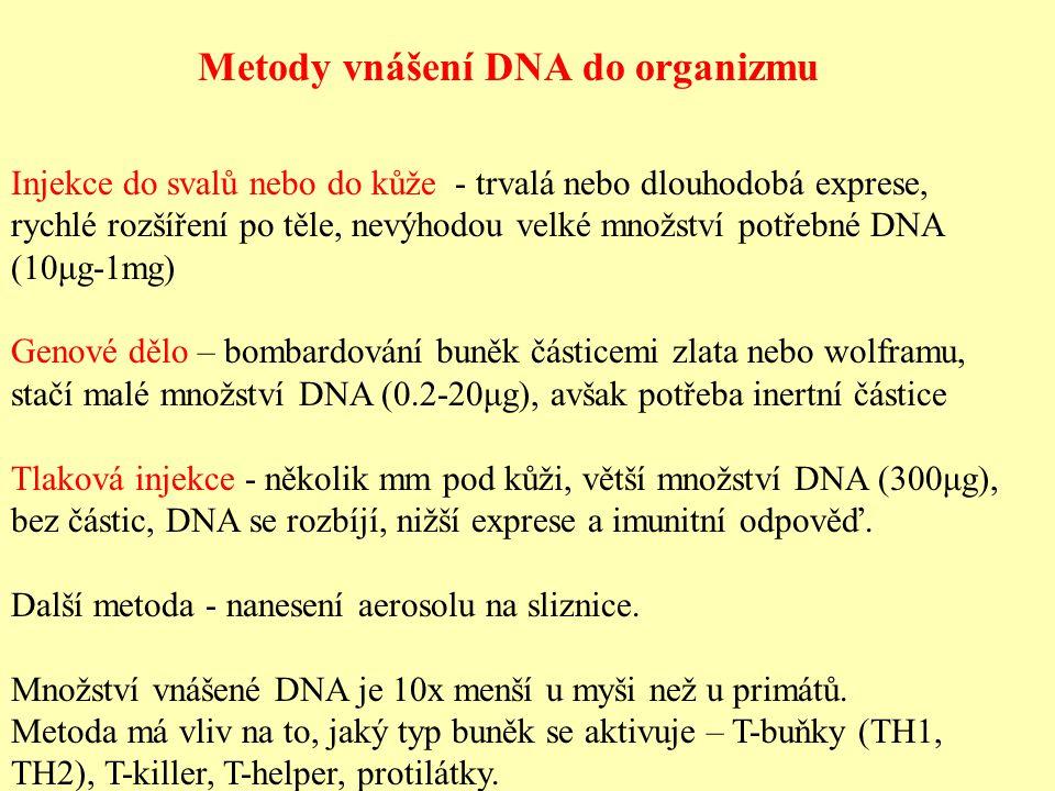 Metody vnášení DNA do organizmu