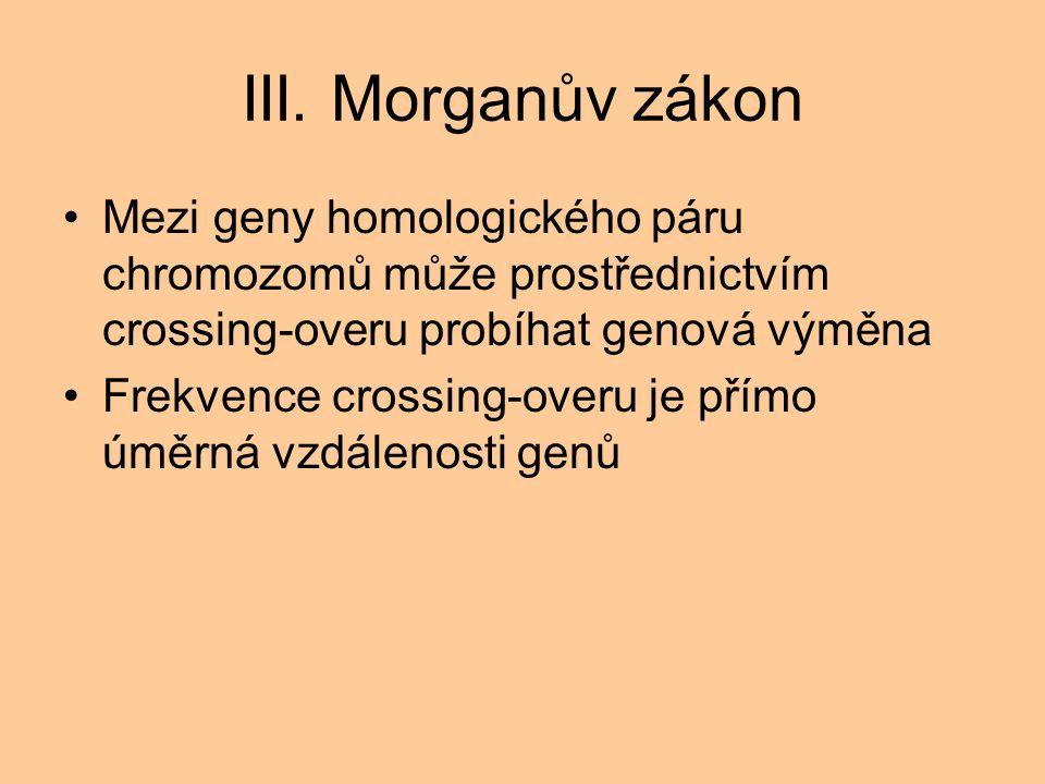 III. Morganův zákon Mezi geny homologického páru chromozomů může prostřednictvím crossing-overu probíhat genová výměna.