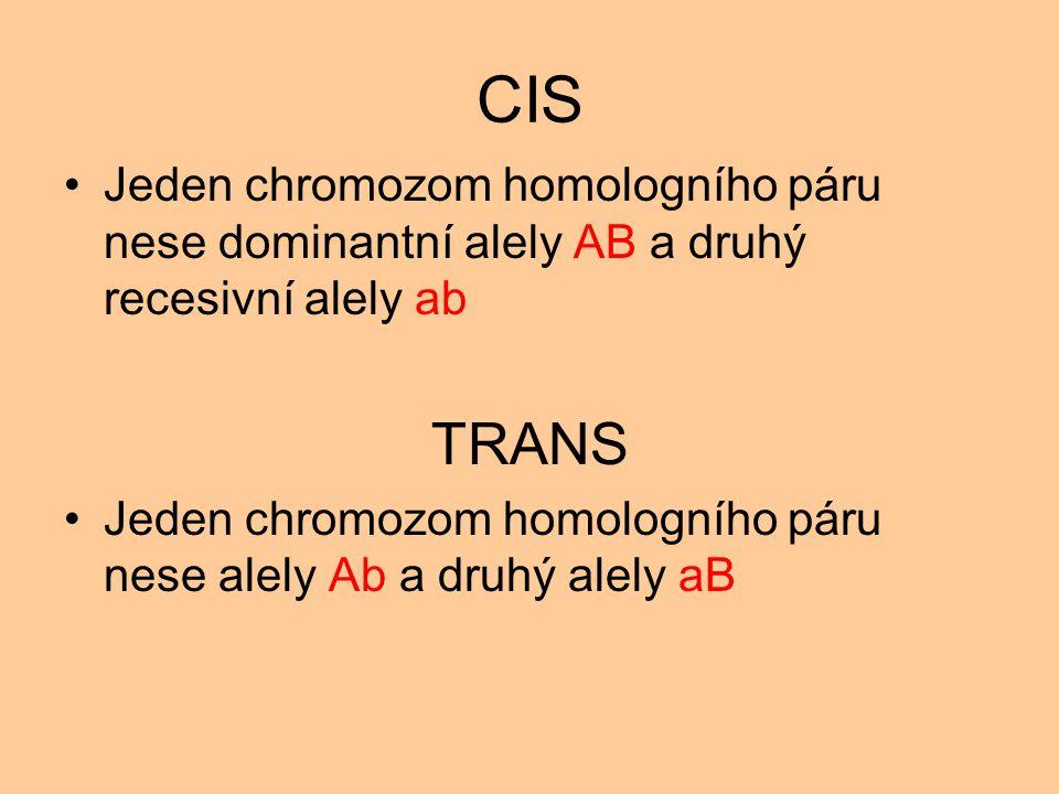 CIS Jeden chromozom homologního páru nese dominantní alely AB a druhý recesivní alely ab. TRANS.