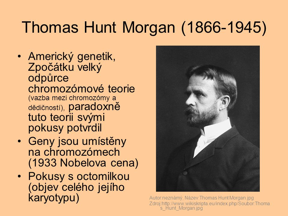 Thomas Hunt Morgan (1866-1945)
