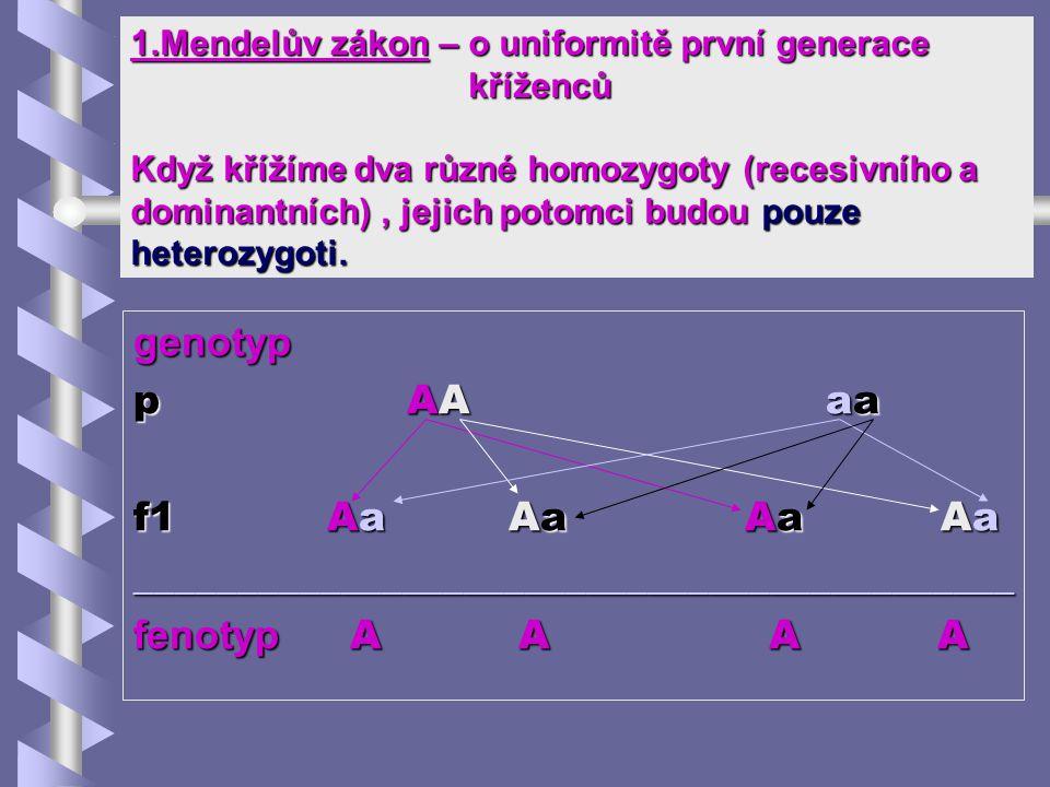 ___________________________________________ fenotyp A A A A