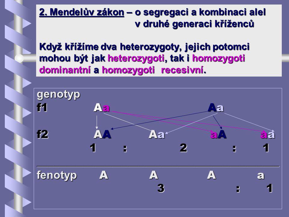 ___________________________________________ fenotyp A A A a 3 : 1