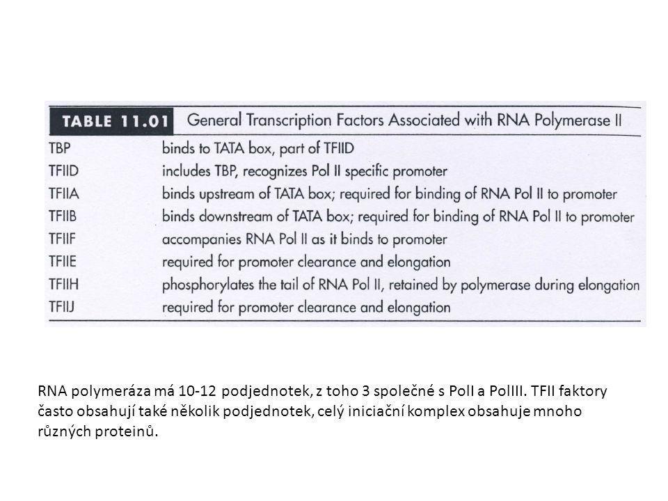 RNA polymeráza má 10-12 podjednotek, z toho 3 společné s PolI a PolIII