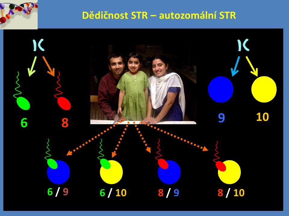 Dědičnost STR – autozomální STR