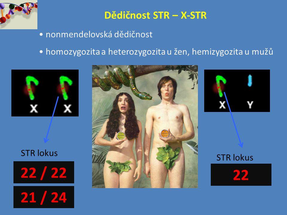 22 / 22 22 21 / 24 Dědičnost STR – X-STR nonmendelovská dědičnost
