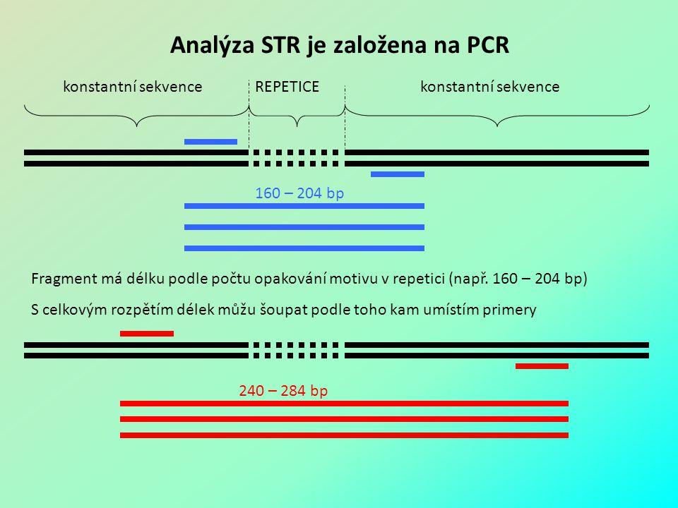 Analýza STR je založena na PCR
