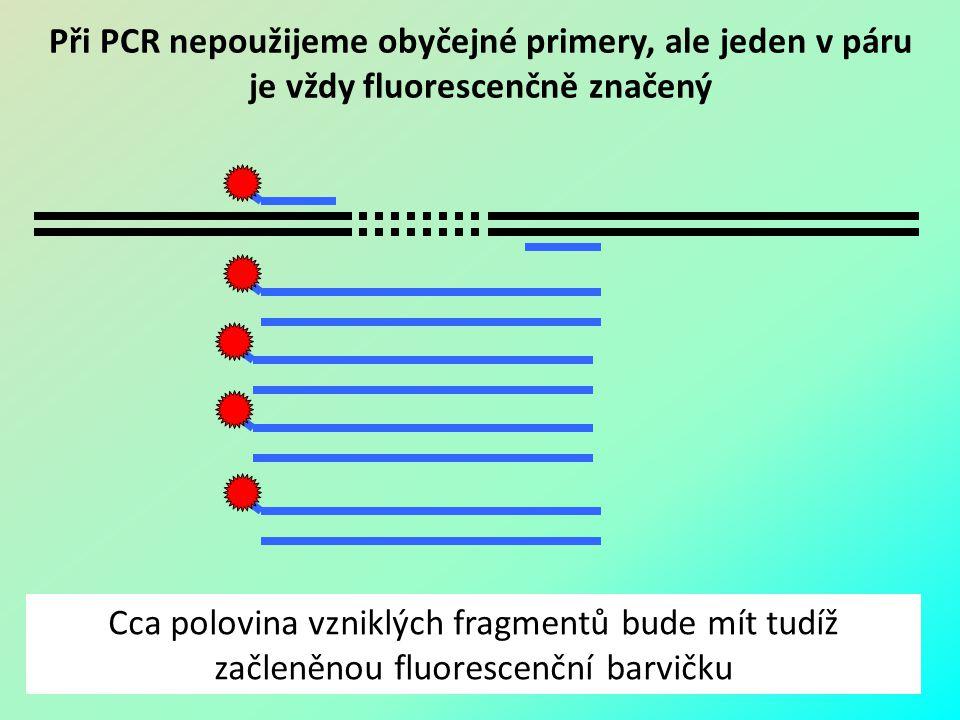 Při PCR nepoužijeme obyčejné primery, ale jeden v páru je vždy fluorescenčně značený