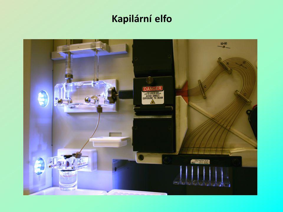 Kapilární elfo