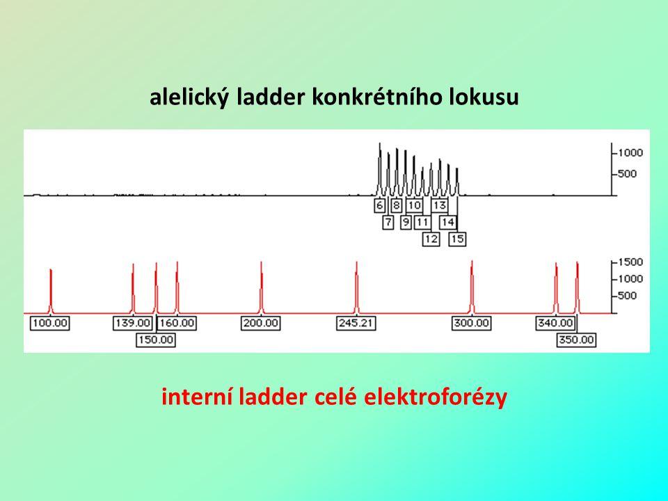 alelický ladder konkrétního lokusu interní ladder celé elektroforézy