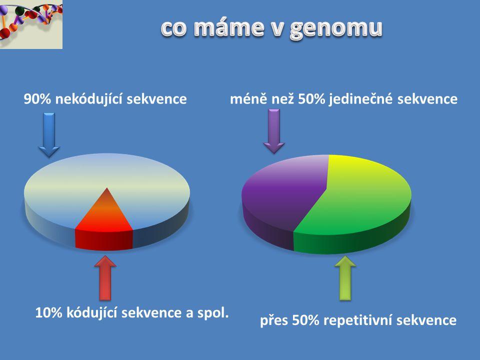 co máme v genomu 90% nekódující sekvence