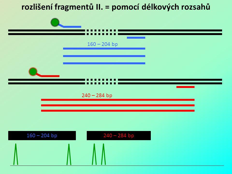 rozlišení fragmentů II. = pomocí délkových rozsahů
