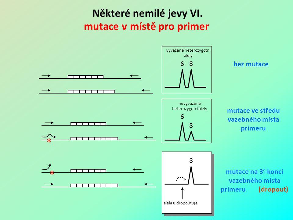 Některé nemilé jevy VI. mutace v místě pro primer