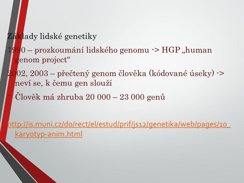 Základy lidské genetiky