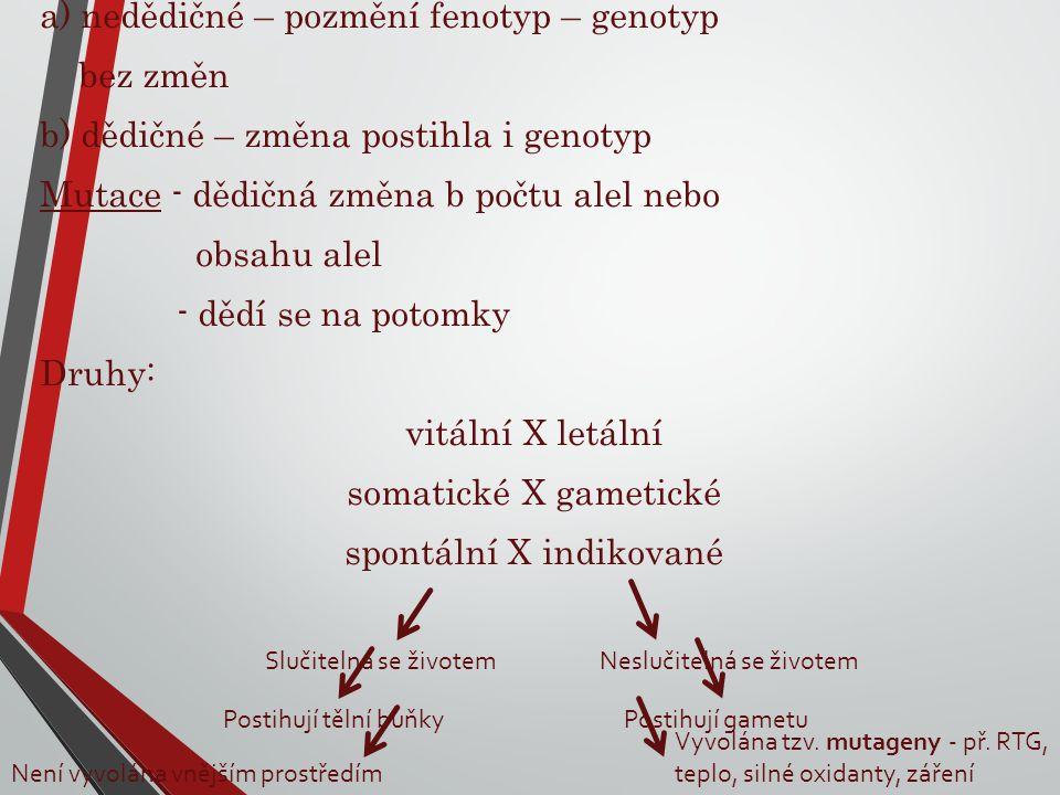 Odchylky: a) nedědičné – pozmění fenotyp – genotyp bez změn b) dědičné – změna postihla i genotyp Mutace - dědičná změna b počtu alel nebo obsahu alel - dědí se na potomky Druhy: vitální X letální somatické X gametické spontální X indikované