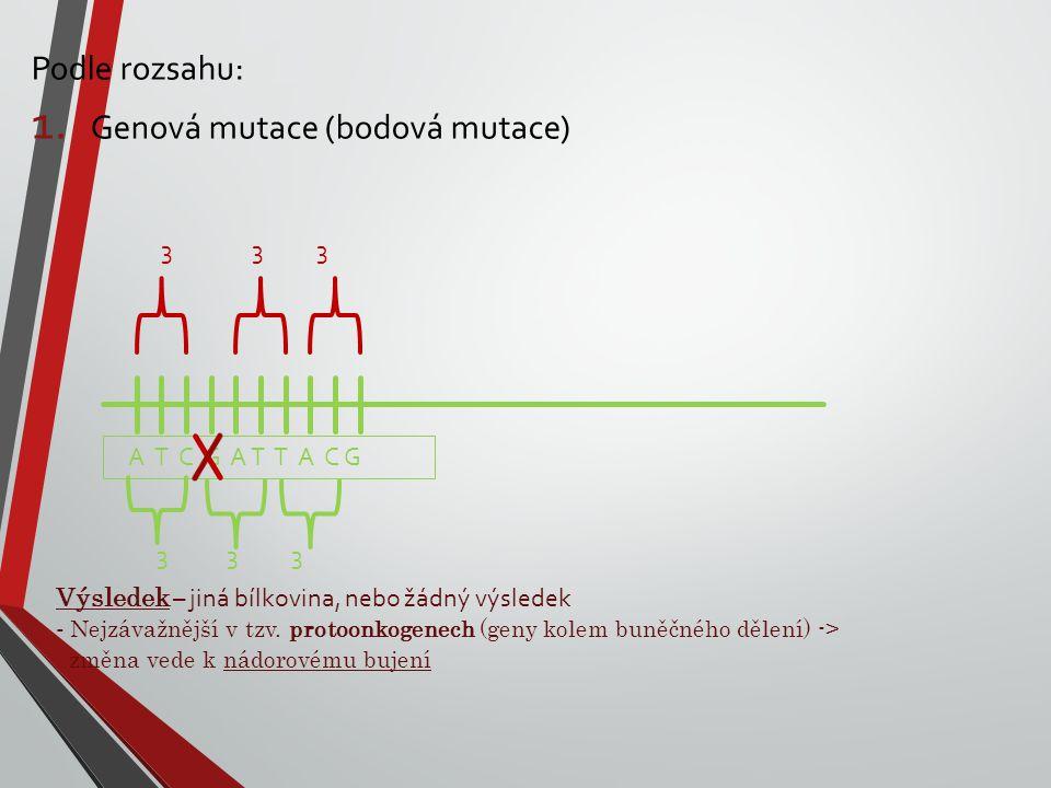 Genová mutace (bodová mutace)
