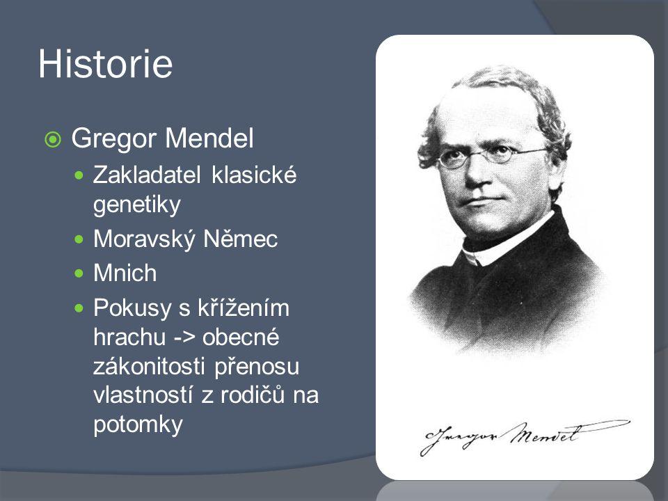 Historie Gregor Mendel Zakladatel klasické genetiky Moravský Němec