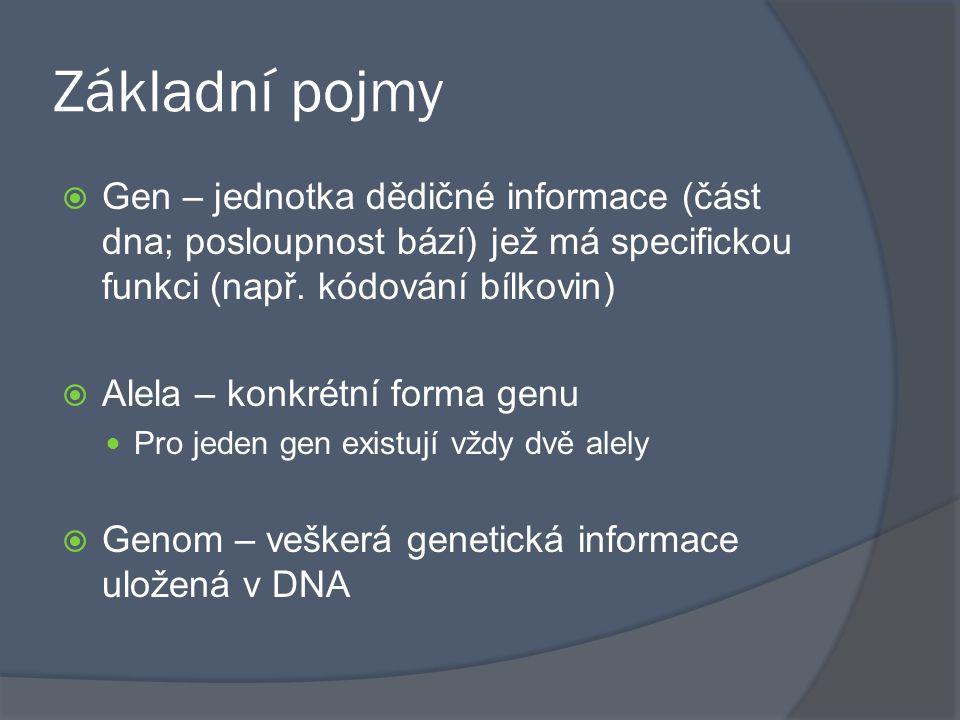 Základní pojmy Gen – jednotka dědičné informace (část dna; posloupnost bází) jež má specifickou funkci (např. kódování bílkovin)
