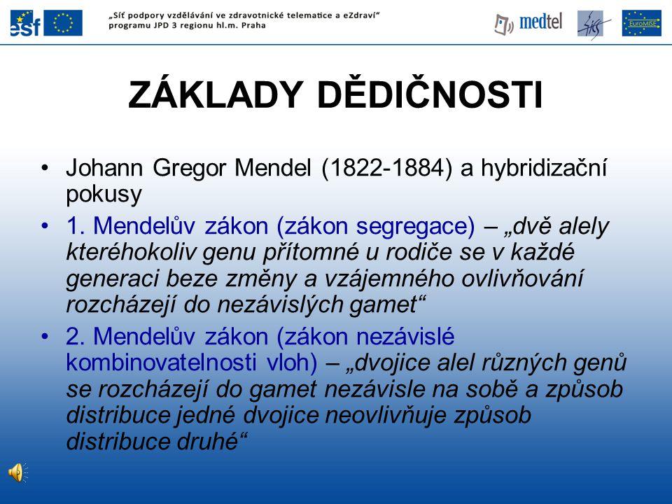ZÁKLADY DĚDIČNOSTI Johann Gregor Mendel (1822-1884) a hybridizační pokusy.