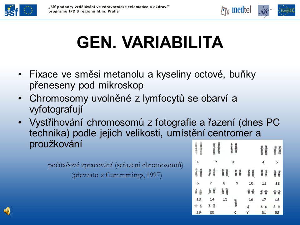 GEN. VARIABILITA Fixace ve směsi metanolu a kyseliny octové, buňky přeneseny pod mikroskop.