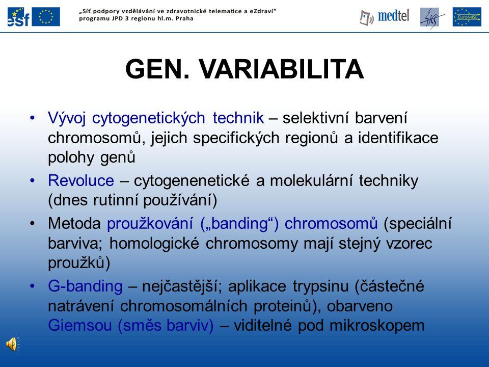 GEN. VARIABILITA Vývoj cytogenetických technik – selektivní barvení chromosomů, jejich specifických regionů a identifikace polohy genů.