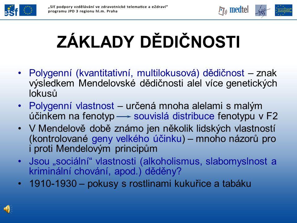 ZÁKLADY DĚDIČNOSTI Polygenní (kvantitativní, multilokusová) dědičnost – znak výsledkem Mendelovské dědičnosti alel více genetických lokusů.