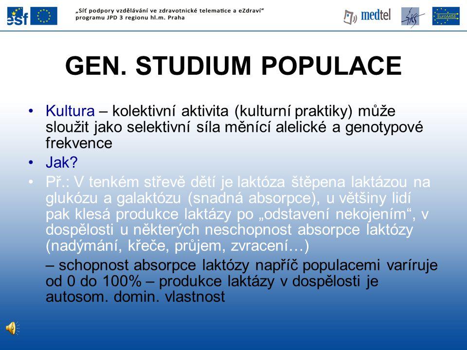 GEN. STUDIUM POPULACE Kultura – kolektivní aktivita (kulturní praktiky) může sloužit jako selektivní síla měnící alelické a genotypové frekvence.