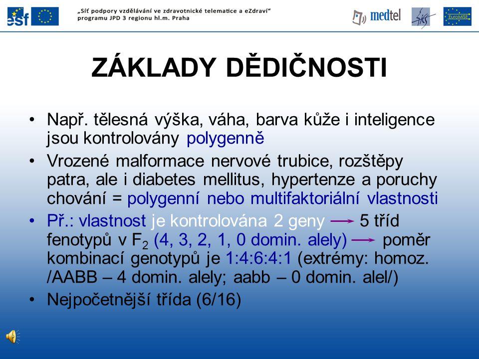 ZÁKLADY DĚDIČNOSTI Např. tělesná výška, váha, barva kůže i inteligence jsou kontrolovány polygenně.