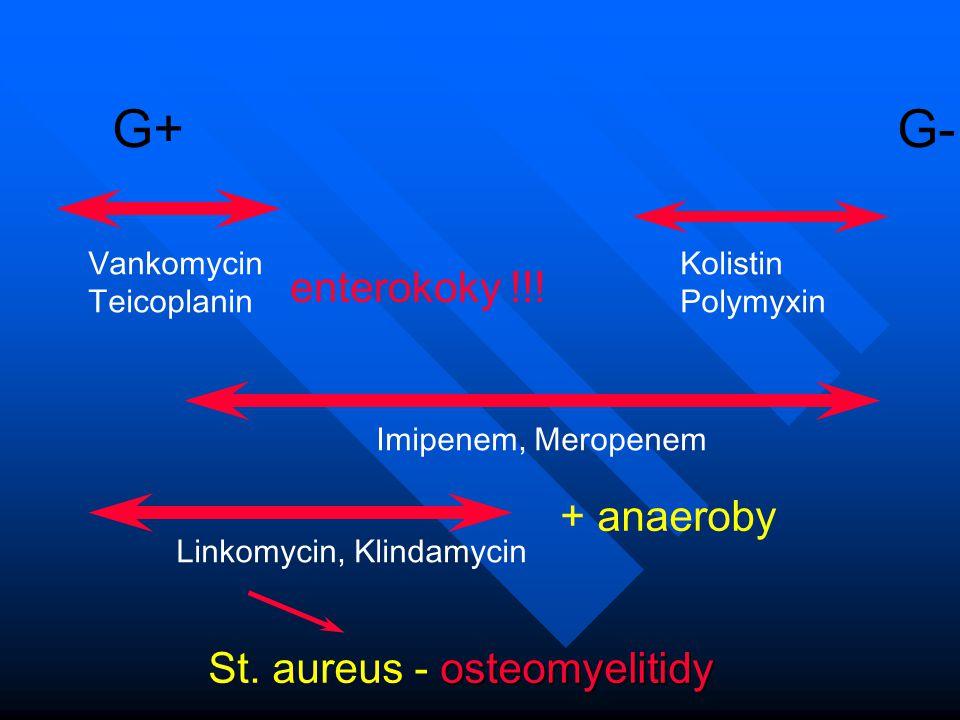G+ G- enterokoky !!! + anaeroby St. aureus - osteomyelitidy Vankomycin