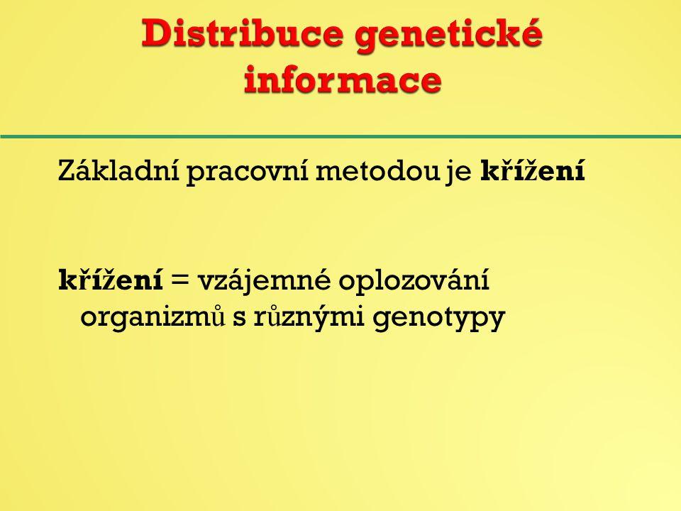 Distribuce genetické informace