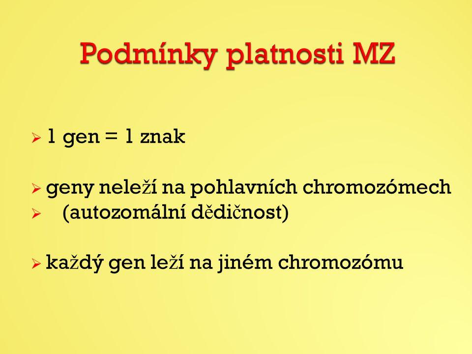 Podmínky platnosti MZ 1 gen = 1 znak
