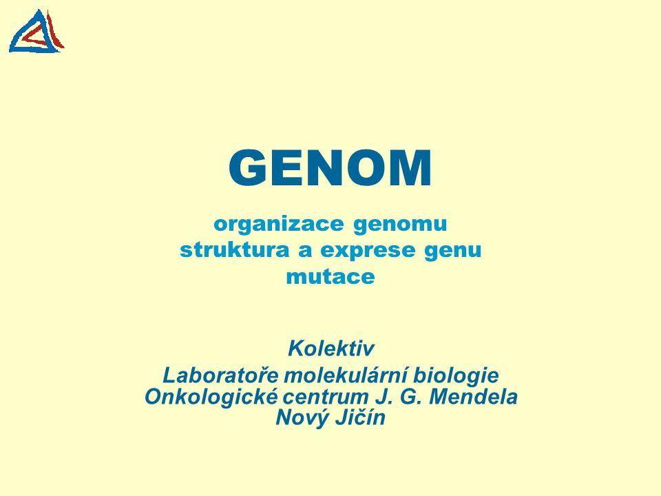 organizace genomu struktura a exprese genu mutace