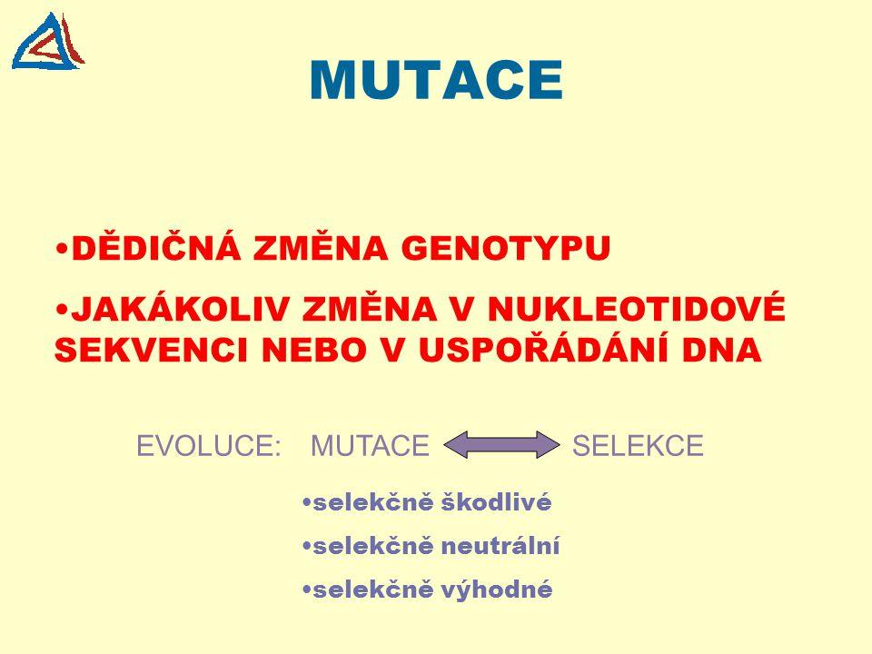 MUTACE DĚDIČNÁ ZMĚNA GENOTYPU