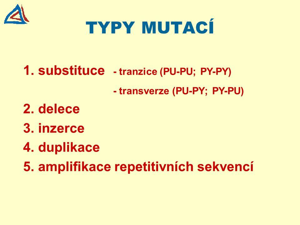 TYPY MUTACÍ substituce - tranzice (PU-PU; PY-PY)