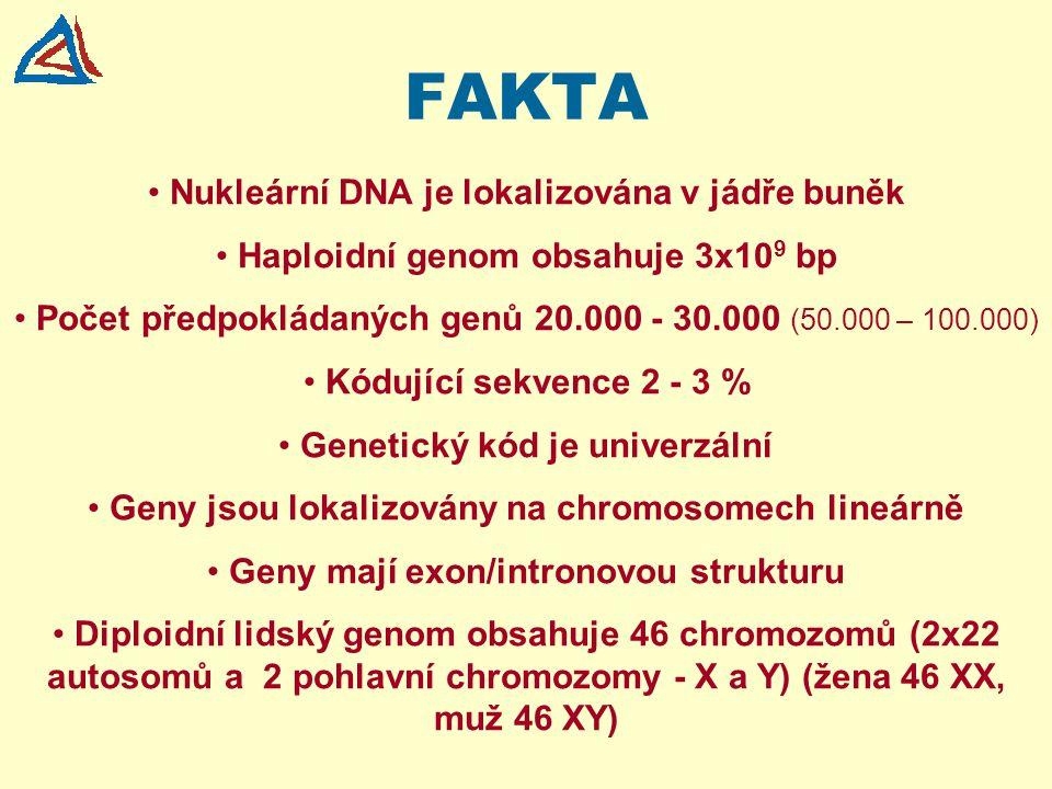 FAKTA Nukleární DNA je lokalizována v jádře buněk