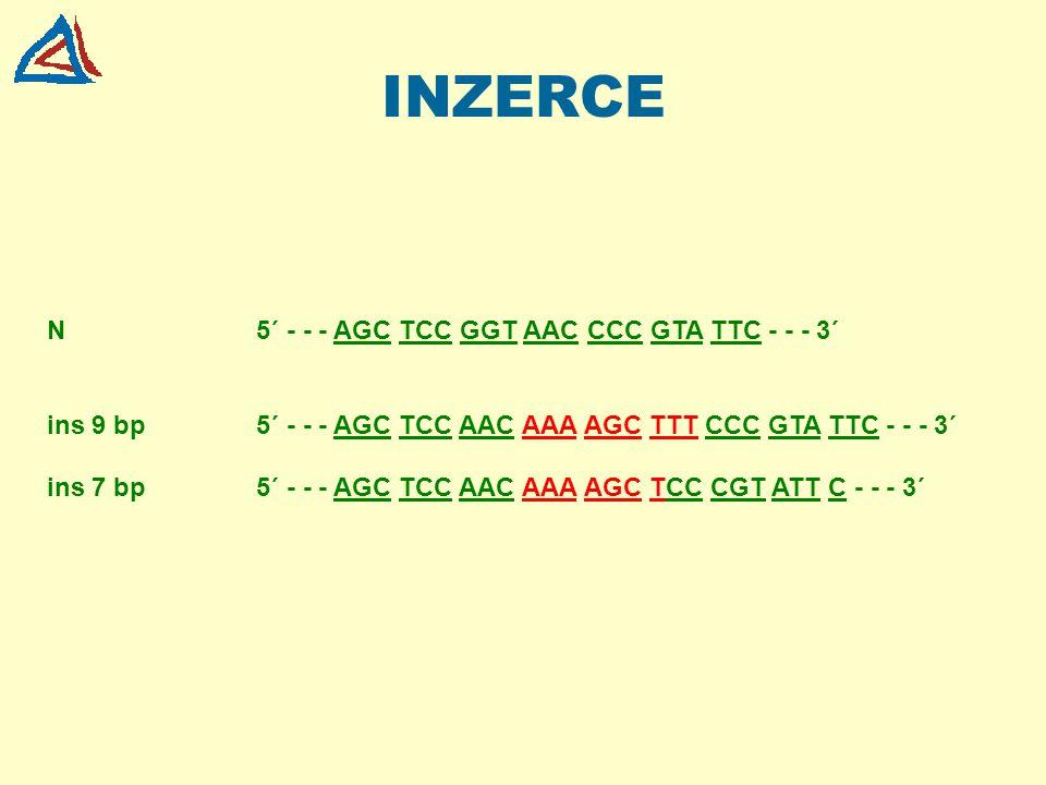 INZERCE N 5´ - - - AGC TCC GGT AAC CCC GTA TTC - - - 3´