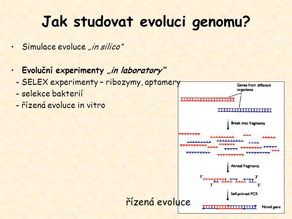 Jak studovat evoluci genomu